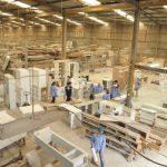 Sử dụng xe nâng loại nào trong các xưởng chế biến gỗ công nghiệp